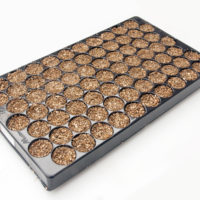 Zaaitrays stekbakken kweekplaten vermiculite